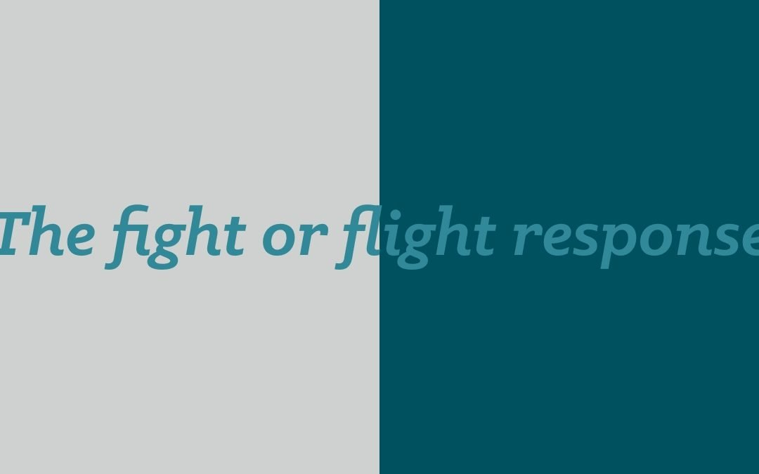 Have you heard of the fight or flight response?