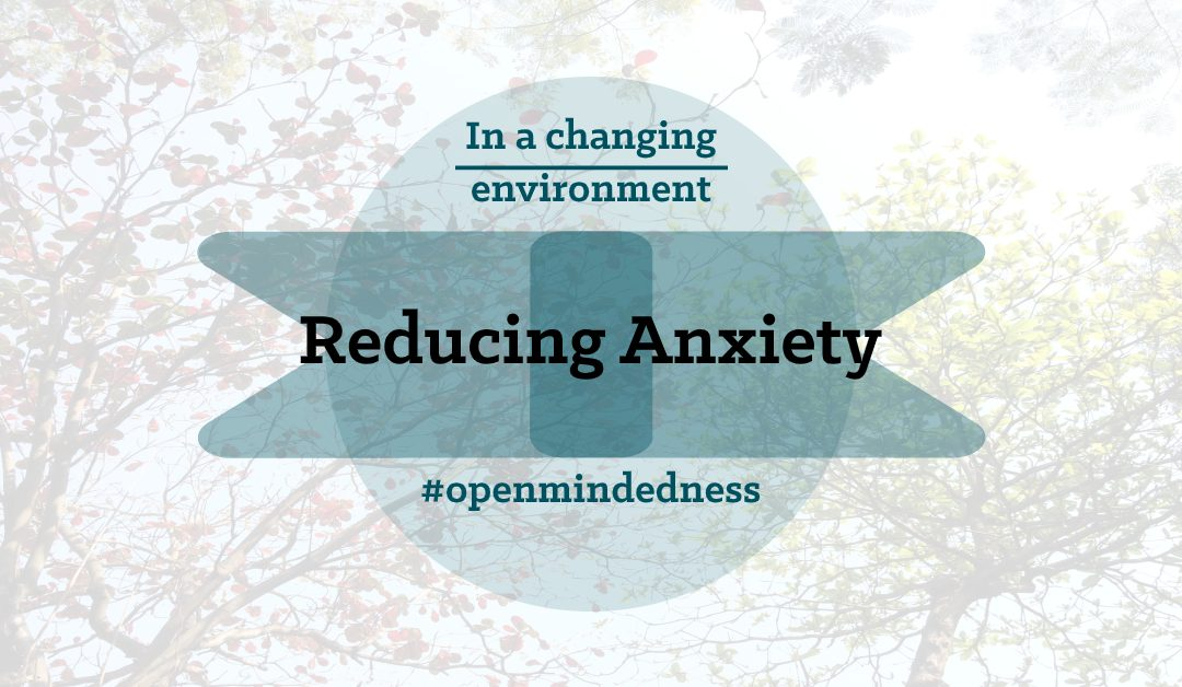 Reducing Anxiety in a Changing Environment