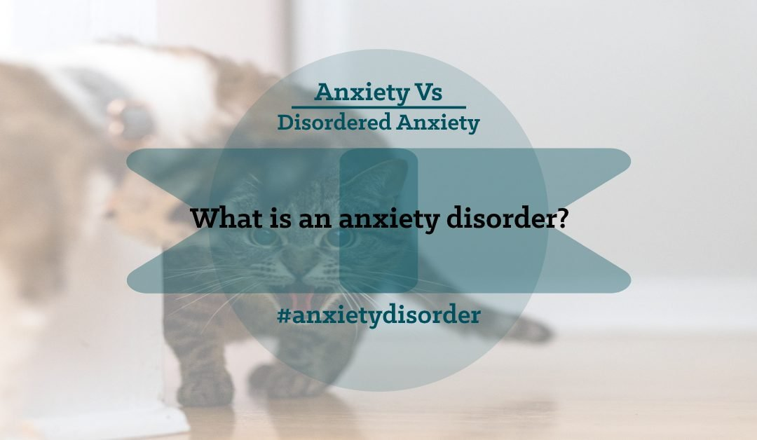 What is an anxiety disorder?